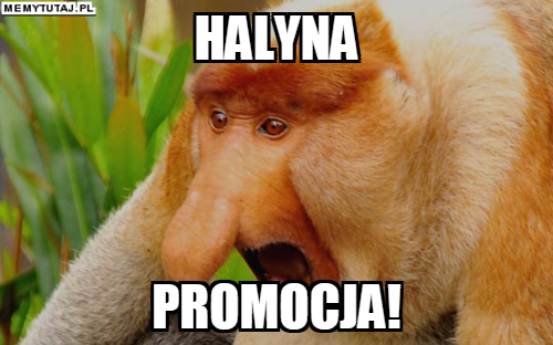 promocja.png