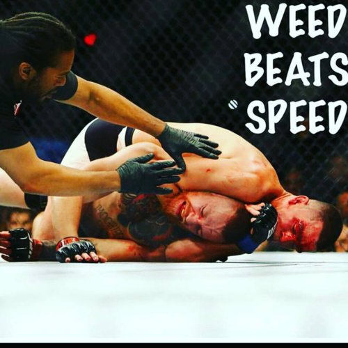weed-beats-speed.jpg